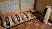 28年産 滋賀県産【近江米】キヌヒカリ玄米10kg 自家栽培