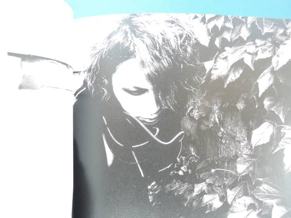 the GazettE ガゼット2008年サマー/コンサートライブ写真集