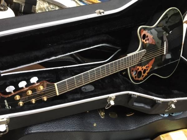 Cat rock guitar img600x450 1481548949rqurss20223