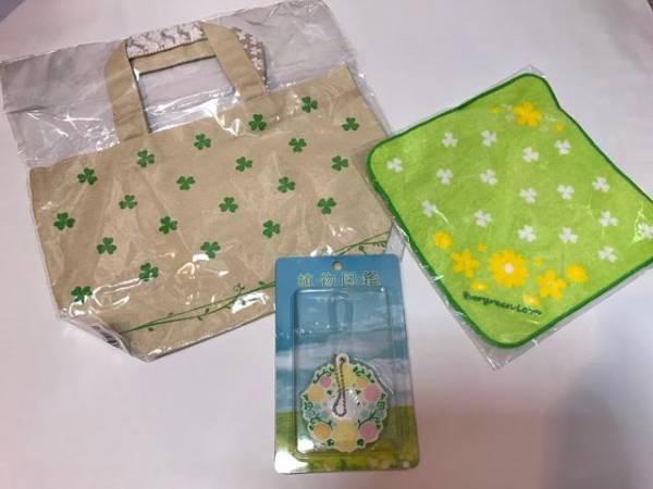 植物図鑑 劇場販売グッズ トートバッグ タオル ミラー 岩田剛典