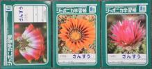 【即決】ショウワノート ジャポニカ学習帳簿 B5 1冊 18種有 JL DM便82円