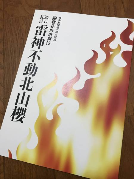 ★送料込み 平成二十一年 通し狂言 雷神不動北山櫻パンフ 海老蔵★