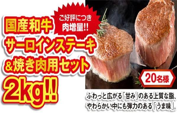 懸賞 応募ハガキ 3枚 ( 国産和牛ステーキ&焼肉 2kg