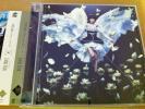 2★綾野ましろ/Lotus Pain(初回限定CD+DVD)★D.Gray-man HALLOW