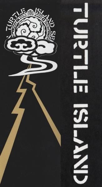 TURTLE ISLAND タートルアイランド ステッカー 2枚 パンク 貴重