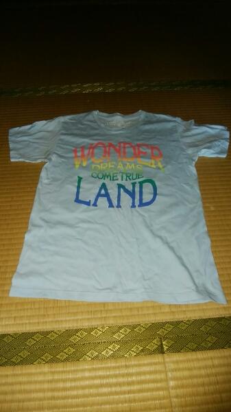 ドリカムワンダーランド2011のTシャツです。