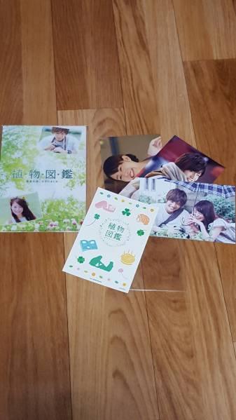 映画 植物図鑑 DVD特典 クリアファイル ポストカード 岩田剛典