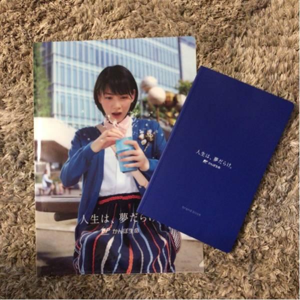 かんぽ生命 のん 能年玲奈 A4 ファイル ノート 写真集 非売品