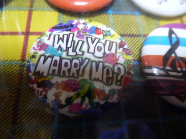 andymori - will you marry me? バッジ 小 中古