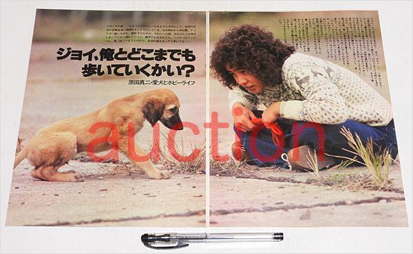 原田真二,愛犬とホビーライフ 切り抜き4p/70年代 ミュージシャン