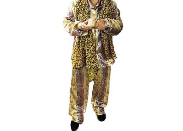 大人気 PPAP ピコ太郎 コスプレ衣装「XL」4点セット