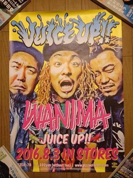 新品 wanima ポスター juice up pizza of death ken yokoyama