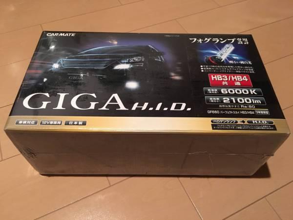 カーメイト GIGA フォグ 用 HID GF660 パーフェクトスカイ 6000K