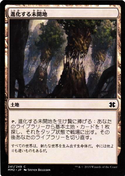 MM2 進化する未開地/Evolving Wilds 日本語1枚 3枚まで_画像1