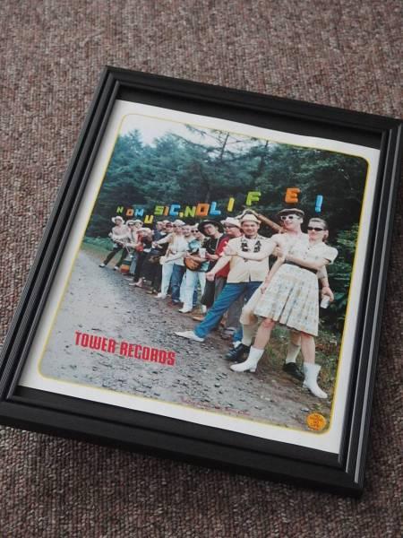 The Ska-Flamesスカフレイムス 額装品 タワレコ広告 送料164円可 同梱可