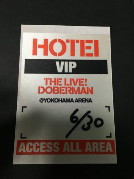 布袋寅泰 DOBERMAN TOUR アクセスパス