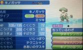 【即決】ポケモン サンムーン データ 6V キノガッサ 意地 襷