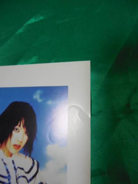 Raphael ラファエル 華月 不滅華 B2サイズポスター_写っていない部分にも複数イタミがあります