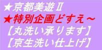 ◇京都美遊Ⅱ02【丸洗いクリーニングしみ抜き安心価格】どすえ~