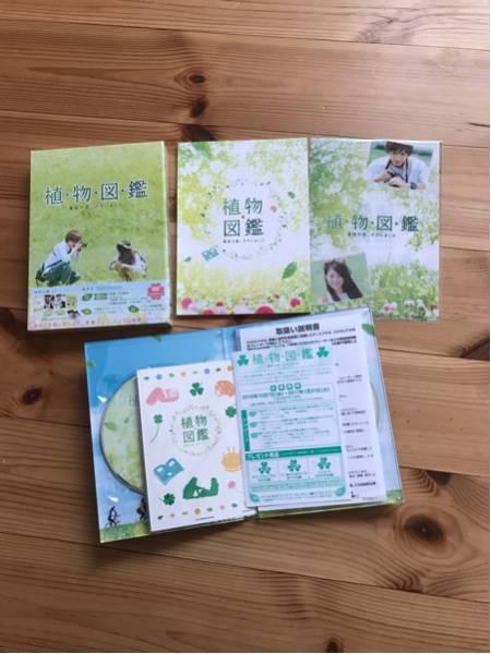 植物図鑑 運命の恋(初回限定生産)DVD 美品