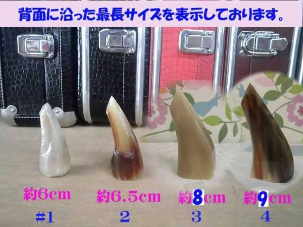 (送料無料) 3.140円開始 沖縄三線専用オランダ牛爪、三線ピック、三種弦セット