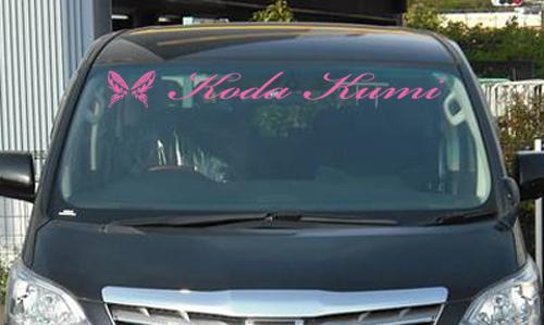 倖田來未 フロントバナー アッパー シール 車用 白 ピンク ライブグッズの画像