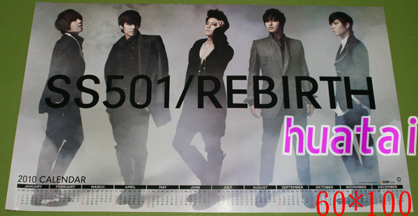 SS501 the 501 Rebirth poster