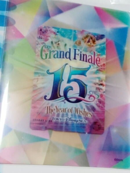 TDS 15周年フィナーレ絵柄 リゾートライン フリーきっぷセット