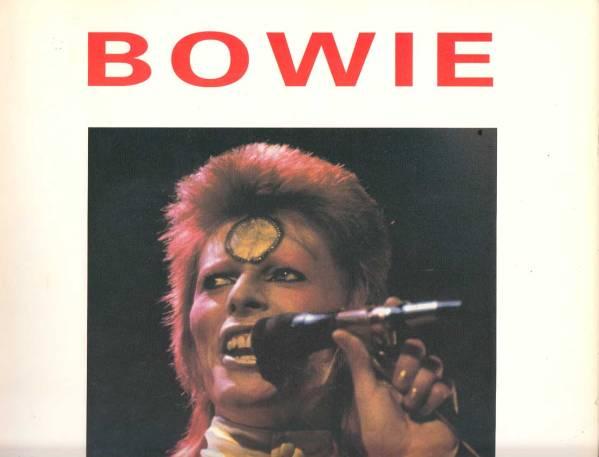 David Bowie 輸入写真集「ZIGGY」