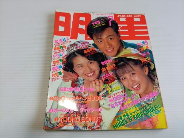 明星 1990 7 SMAP 光GENJI 男闘呼組  コンサートグッズの画像