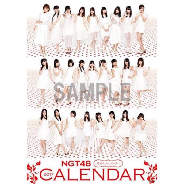 【送料無料】NGT48 日めくり卓上カレンダー 2017 生写真なし ライブグッズの画像