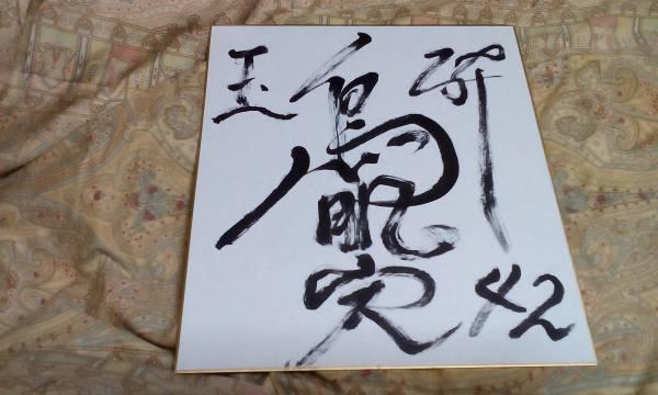 皇居に向かって敬礼!★鳥肌実 直筆色紙★42歳厄年 タナカヒロシのすべて 魂のアソコ