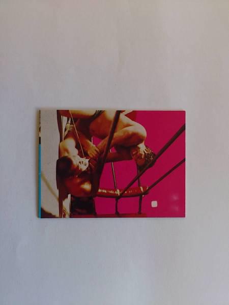 新日本プロレスカード 28番 タイガー・ジェット・シン グッズの画像