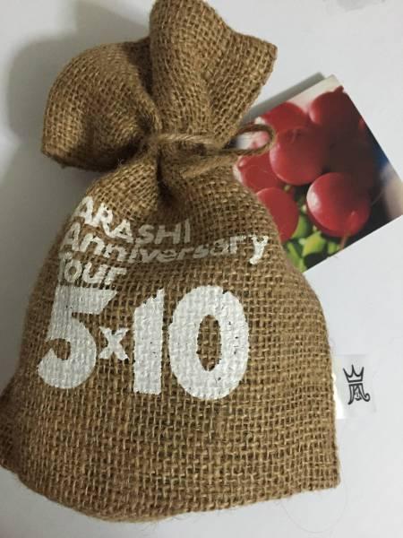 嵐 5x10 ミニラディッシュ 栽培キット