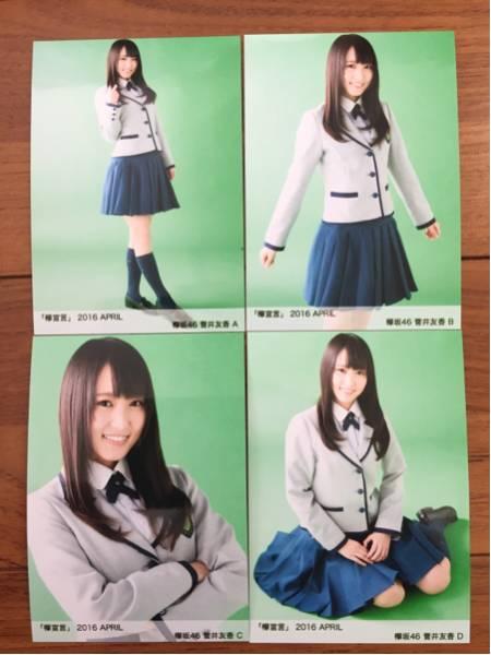 欅坂46 欅宣言 2016 4月 April 生写真 4種コンプ 菅井友香