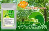 イチョウ葉エキス 約1ヶ月分 健康 ハーブ エネルギー ギンコライド テルペン 健康食品 サプリメント