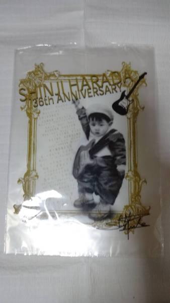 (*^^*)原田真二☆36周年記念サイン付きクリアファイルです。未使用!