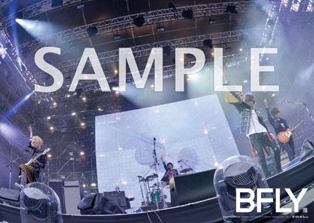BUMP OF CHICKEN STADIUM TOUR 2016 BFLY ポスター 未使用 送料250円~ バンプオブチキン ライブグッズの画像