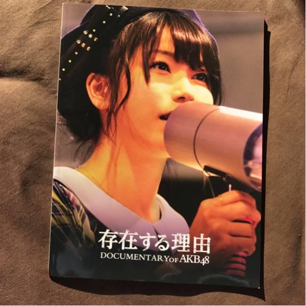AKB48ドキュメンタリー 存在する理由 パンフ ライブ・総選挙グッズの画像