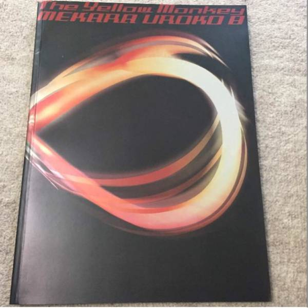 イエモン 2001年 ツアーパンフレット ライブグッズの画像