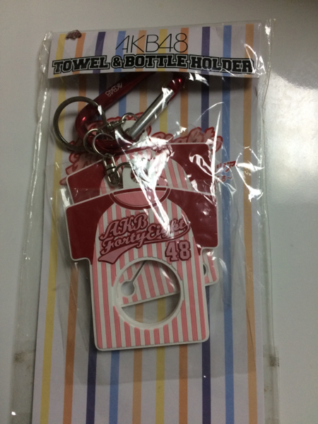 AKB48 ドームツアー2013 タオル&ボトルホルダー 未開封品。