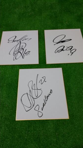 ⑤東京ヤクルトスワローズ直筆サイン色紙 3枚セット グッズの画像