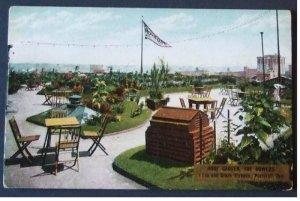 アンティーク絵葉書 外国風景 2枚組 Roof Garden, The Bowers , Portland Ore. +  San Francisco Church & Park,Panama City