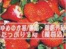 ●生産者おすすめ品●安心安全/化学農薬不使用栽培●完熟ゆめのか苺優品規格外品たっぷり2kg(風袋込)