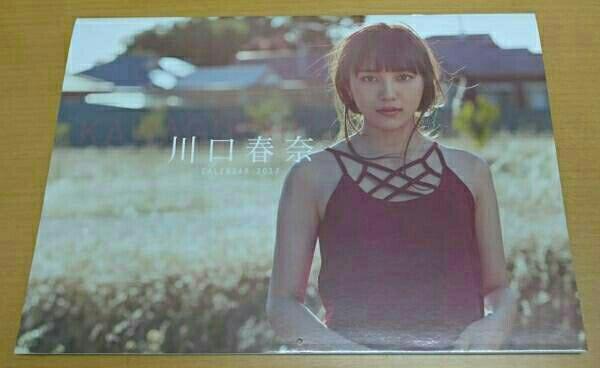 川口春奈 2017年カレンダー サイン入り 新品 グッズの画像