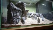 ADA 龍王石セット洞窟風景