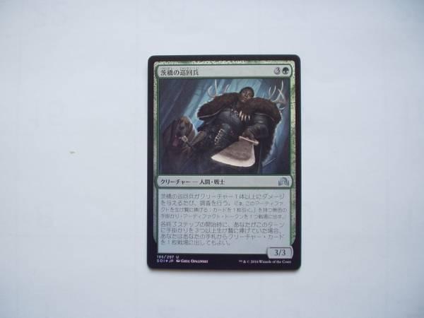 MTG 茨橋の巡回兵/Briarbridge Patrol foil 日本語1枚_画像1