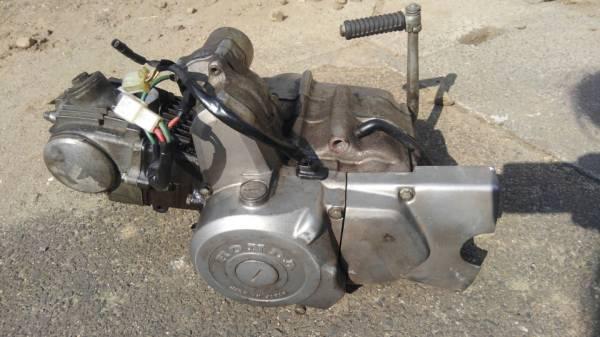 カブ エンジン セル付 (モンキー ダックス シャリー ゴリラ カブカスタム 4速 マグナ c50