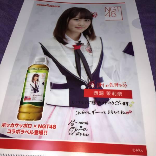 NGT48 ポッカサッポロの非売品クリアファイル西潟茉莉奈 ライブグッズの画像