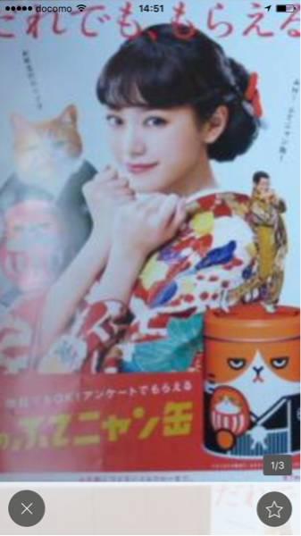 Y!mobile 販促用ポスター&チラシ セット 桐谷美玲 グッズの画像
